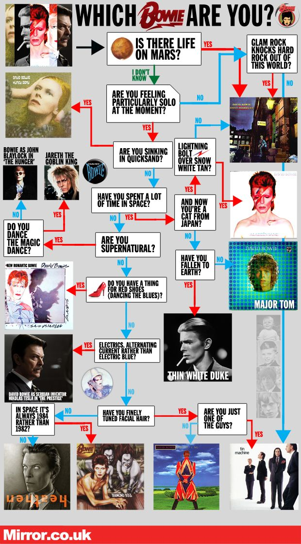 Which Bowie are you?