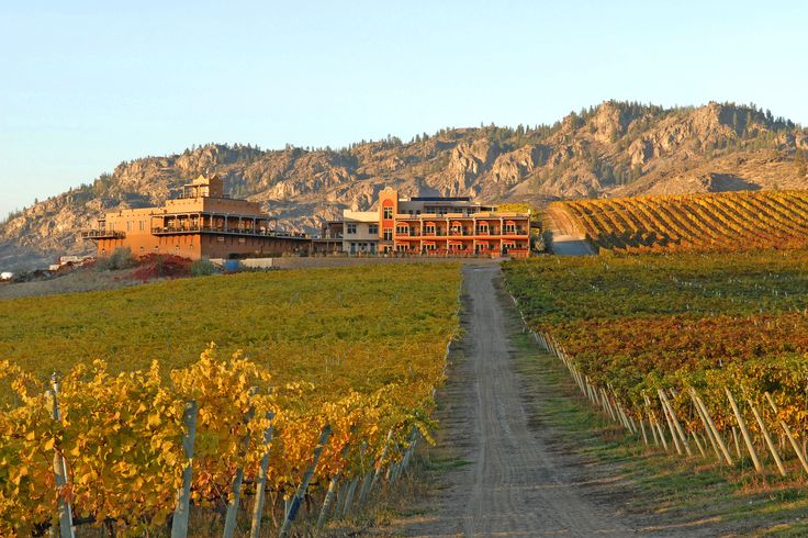 Burrowing Owl Winery  Sonora Restaurant, Oliver, British Columbia, Canada! Stunning views. Located half way between Oliver and Osoyoos.