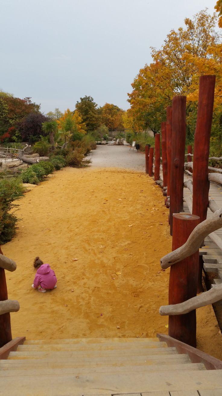 Bright autumn days in Safari Park in Dvur Kralove nad Labem, Czech Republic