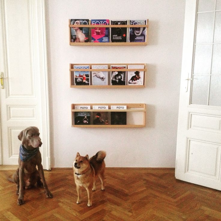 Bespoke wooden shelves for magazines and vinyls.  Carpenter, 1400 CZK  #bespoke #magazines #shelves #wooden #vinyls #furniture