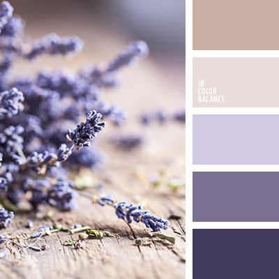 Gentle laconic palette. Shades of purple and lavender blend harmoniously with the pastel beige and gray-white.