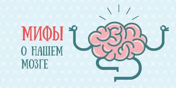Многие люди до сих пор уверены, что мозг задействован только на 10%, алкоголь убивает нейроны, а игры на развитие памяти и логики действительно помогают стать умнее. Пора избавиться от этих заблуждений.
