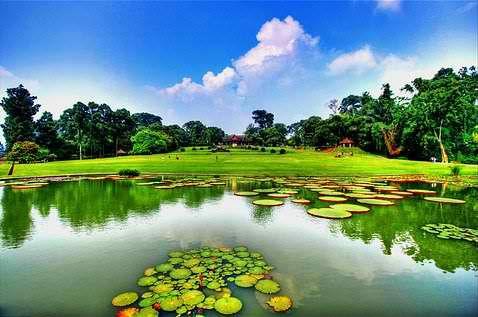 Bogor Botanical Gardens. Located in Bogor, Indonesia, 60 km south of Jakarta. http://exploretraveler.com