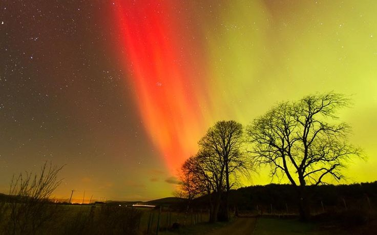 Northern Lights over Carrbridge, Inverness-shire, Scotland.