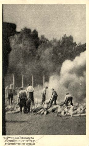 One of very few photographs documenting the murder of the victims and the cremation of the bodies in the Auschwitz II-Birkenau camp. The pictures were taken by stealth by a member of the Sonderkommando and smuggled out by the international underground operating in the camp. The picture shows the cremation pits which were used because the original crematoria were not efficient enough especially in 1944 during extermination of Hungarian Jews.