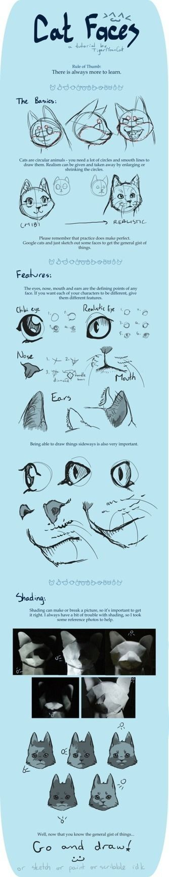 Cat Faces Drawing Reference Guide | Drawing References and Resources | Scoop.it