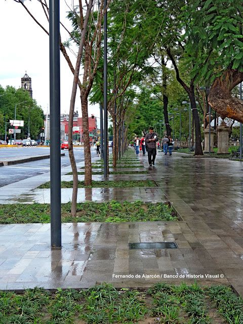 La tarde lluviosa. Rainy afternoon.