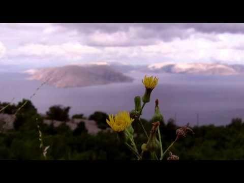 Przyroda na wyspie Hvar w Chorwacji https://www.youtube.com/watch?v=qkFswCUILfY #hvar #chorwacja #croatia