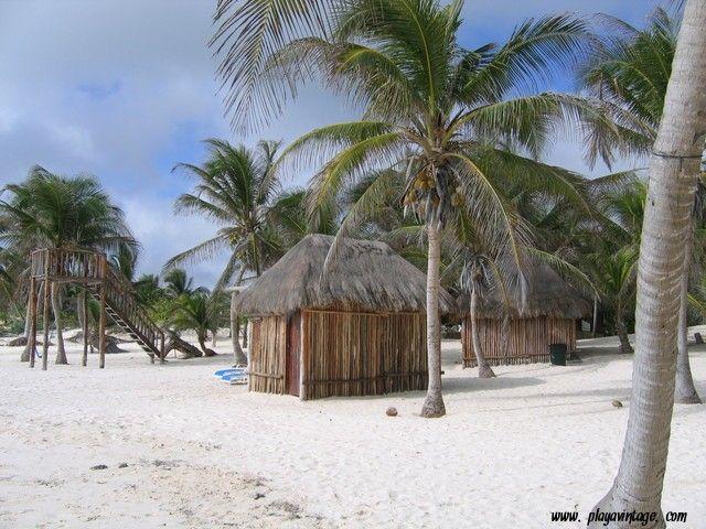 The #PlayadelCarmen's #beach is #fantastic! #playadelcarmen #playacar #caribe #sol #mar #party #mexico #caraibi #ff #rivieramaya #bedandbreakfast #messico #vacaciones #vacanze #facebook #playa #spiaggia #love #instagood #me #cute #follow #like #followme #summer www.playavintage.com