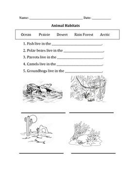 animal habitats teacher activities animal habitats habitats animals. Black Bedroom Furniture Sets. Home Design Ideas
