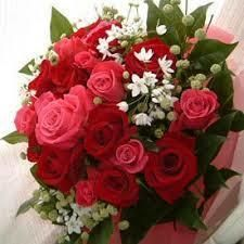Send Flowers To Jammu through buy flower get same day delivery online florist jammu, florist in jammu, jammu flowers delivery just place your order here.visit our website http://www.buyflower.in/send-flowers-to-jammu