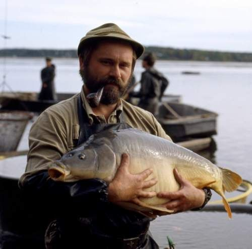 A fisherman with a carp - traditional Czech delicacy