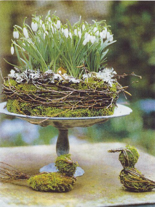 moss+twig garland with snow drops - what a lovely spring table centre...Floral Centerpieces, Easter Centerpieces, Birds Nests, A Cozy, Easter Cake, Easter Decor, Spring, Cake Plates, Flower