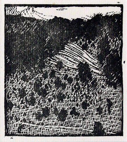 Stráň pod lesem dřevoryt / woodcut, 8,5 x 7,5 cm, 1911 - Vojtěch Preissig