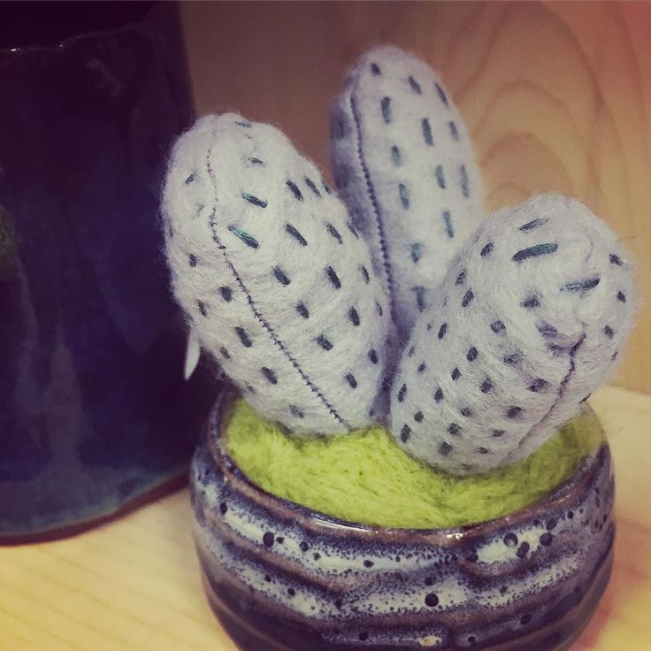 These little pincushions haven't made an appearance on here for a while! -K #cactus #pincushion #handmade #cactuspincushion #ceramics #pottery #felt #feltcraft #decor #homedecor #hunterandthistledecor
