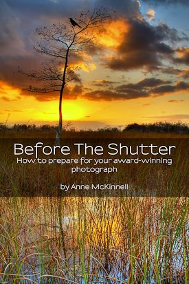 Free eBook Today-Before The Shutter