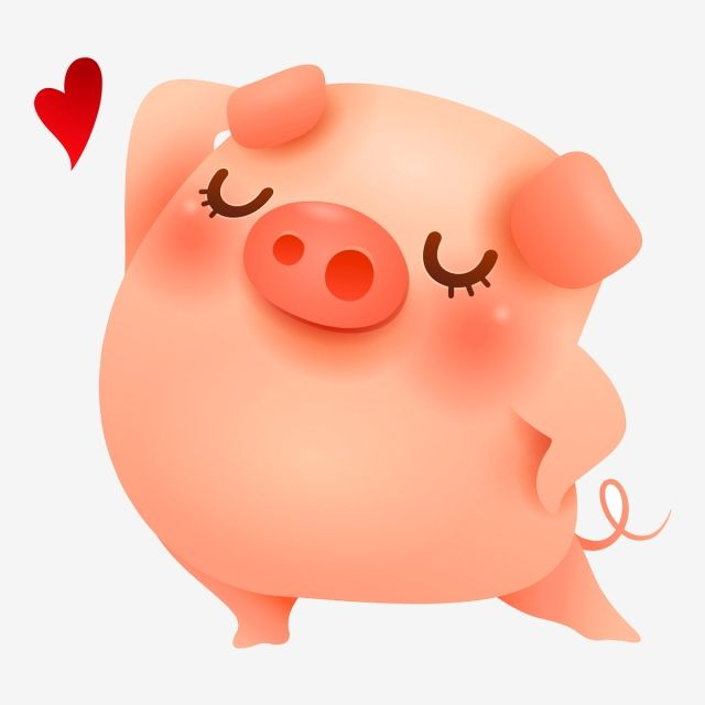 Millions Of Png Images Backgrounds And Vectors For Free Download Pngtree Pig Cartoon Pig Wallpaper Pig Art