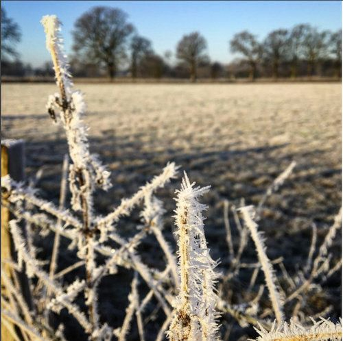 There have been bright frosty days…