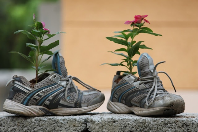 DIY :: Shoe Planter