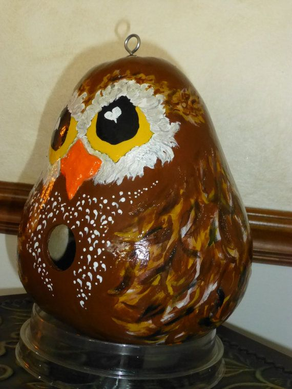 Owl Birdhouse Hand Painted Gourd Whimsical & Adorable Designs