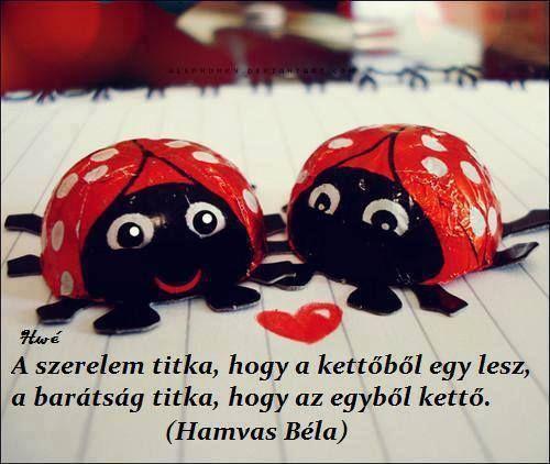 Hamvas Béla idézete a szerelem és a barátság titkáról. A kép forrása: Tudatos életmód # Facebook