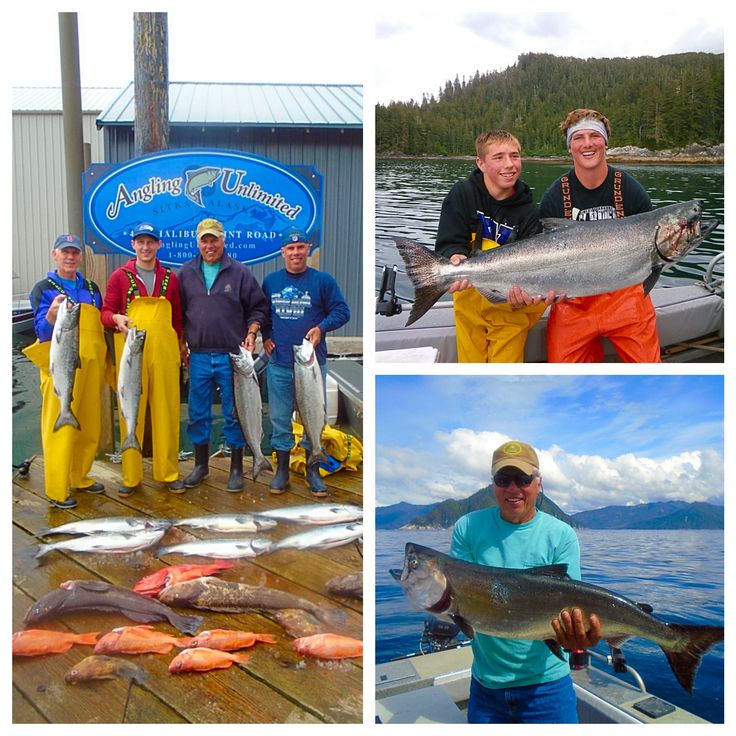 Sitka Fishing Report 7/1: McLean Party | Salmon fishing spreads out along the coast, halibut fishing is on fire, and Thomas Marici catches a monster king in the Shark Hole. Read about the McLean's recent trip in our latest fishing report.