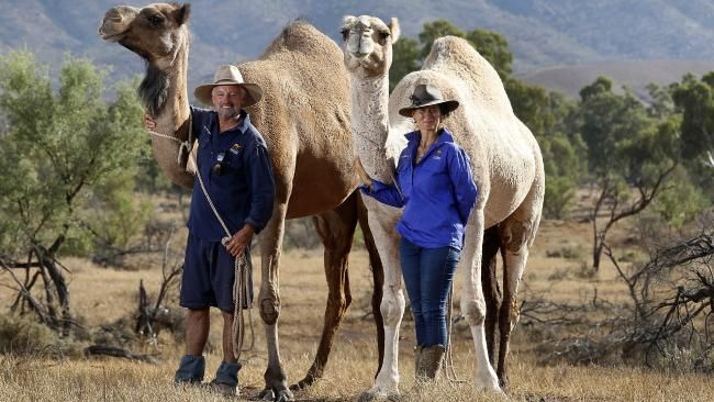 Meet Paul and Karen Ellis of Camel Treks Australia! - http://www.cameltreksaustralia.com.au/ - Make your booking with us today!