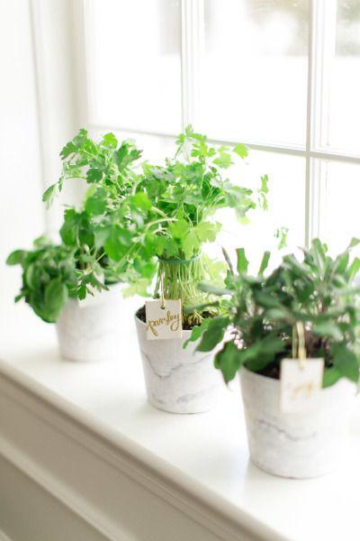 DIY Windowsill Herb Garden // DIY Gifts for Mom by  Style Me Pretty
