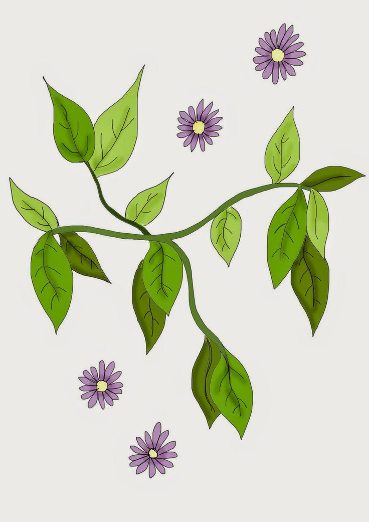 michelle urquhart surface designer/ illustrator uk: