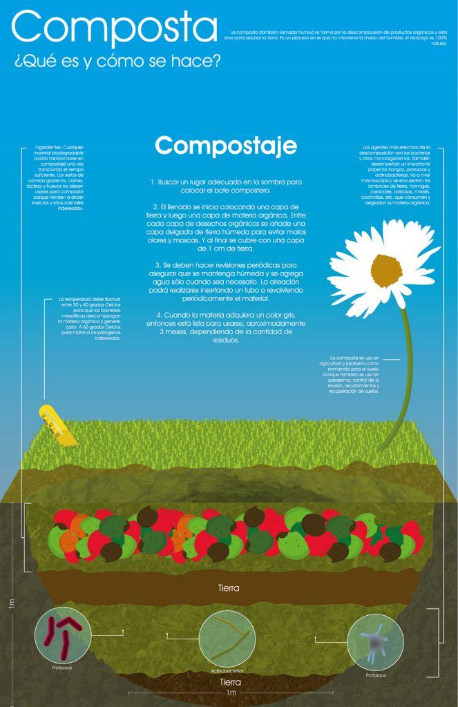 Cómo se hace el compost #infografia #infographic