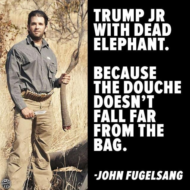 Funny Quotes About Donald Trump by Comedians and Celebrities: John Fugelsang on Trump Jr.