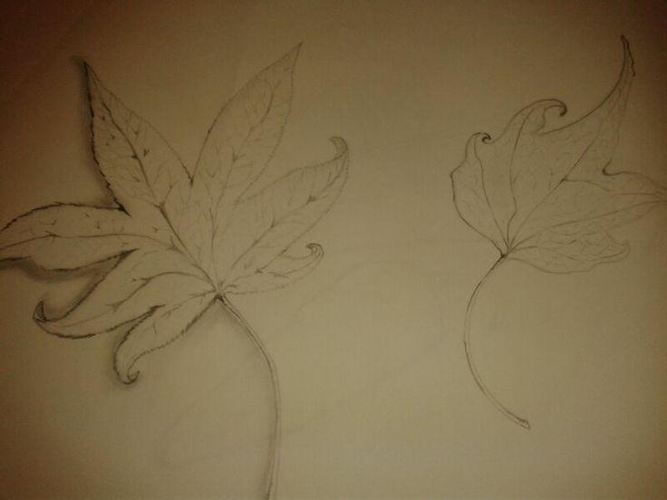 hojas de otoño (analítico)