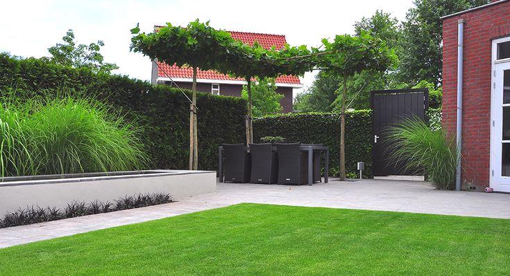 Hoektuin ontwerp google zoeken patio trees pinterest bakken tuin en zoeken - Afbeeldingen van terrassen verwachten ...