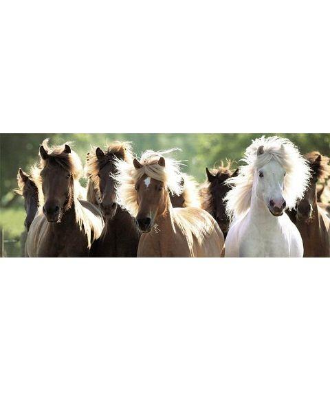Ravensburger панорамный Дикие лошади