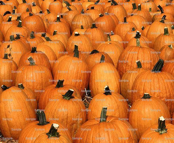 Kürbisse Thanksgiving Halloween  essbare Kuchen von ArtofEricGunty
