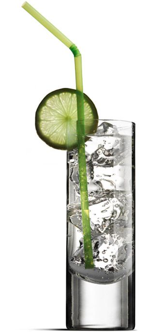 Gin and Tonic pairings