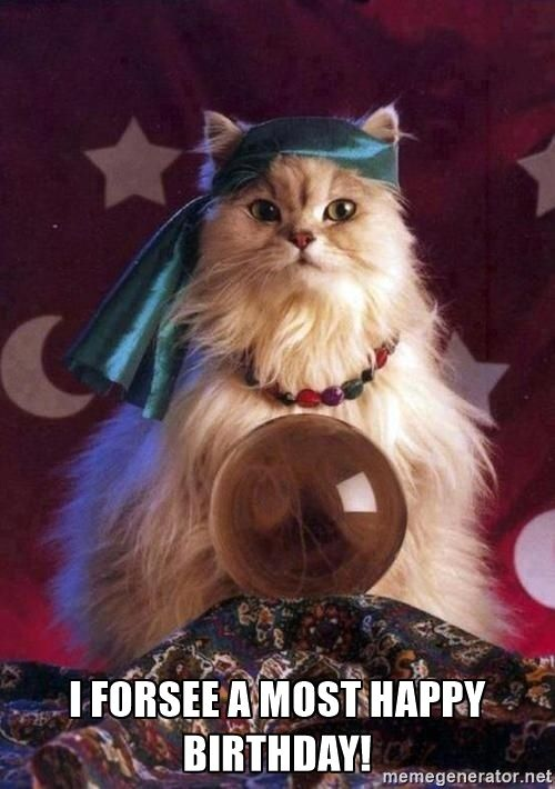crystal ball cat -  I forsee a most happy birthday!