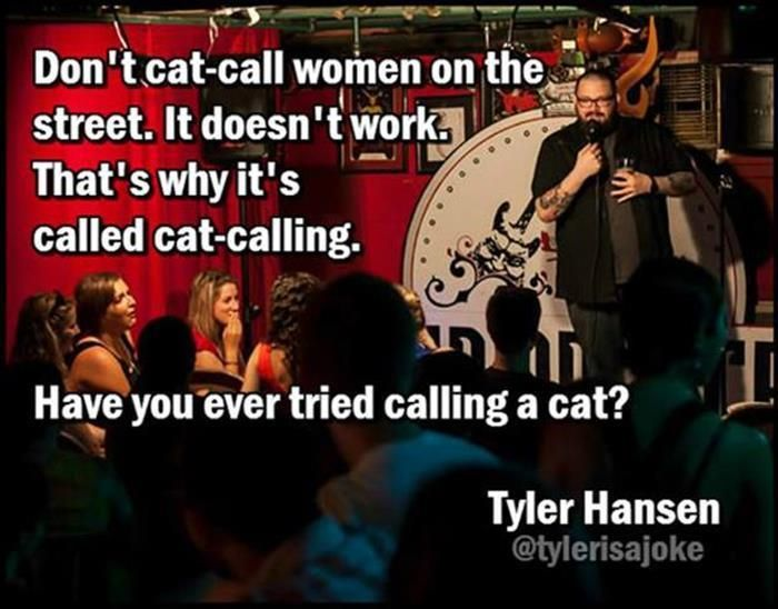 Why it's called cat calling. I always thought it had to do with another word for women's anatomy, but this is funny