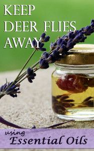 Keep Deer Flies Away using Essential Oils
