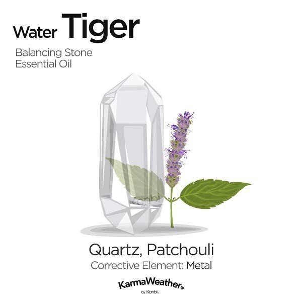 Water Tiger Born In 1962 Watertiger Tiger Tigers Chinesezodiac Wuxing Spiritual Spiritu Cristales De Sanacion Piedras Y Cristales Piedras Curativas