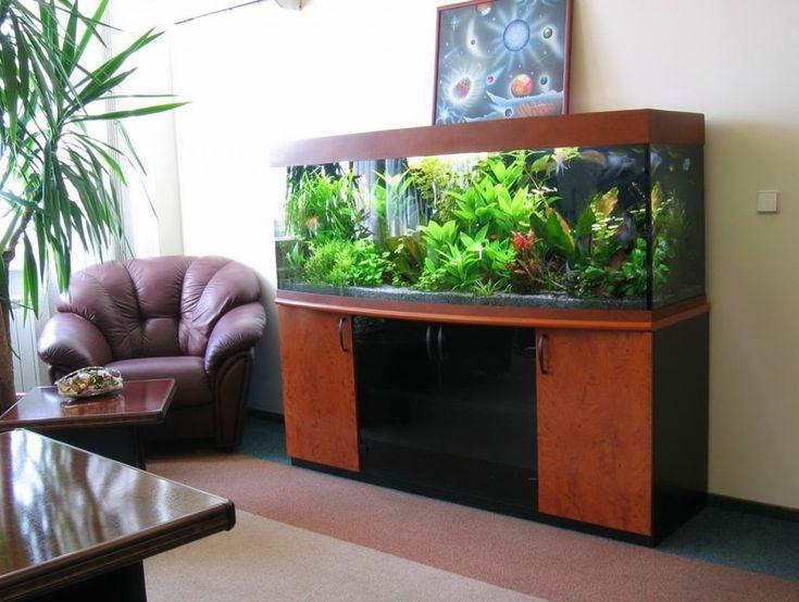 Die besten 25+ Aquarien in der Architektur Ideen auf Pinterest - deko fur aquarium selber machen