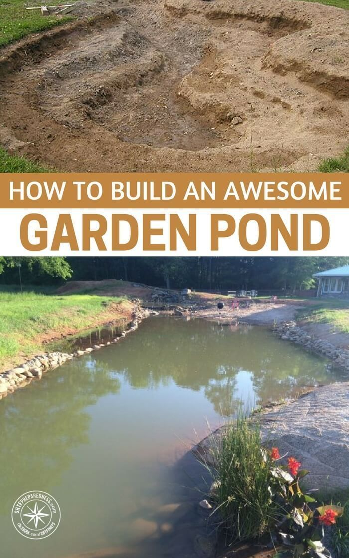 How To Build An Awesome Garden Pond Garden Ponds Are Not Just For Avid Gardeners They Act As Great Water Reservoirs Pond Landscaping Lake Garden Garden Pond