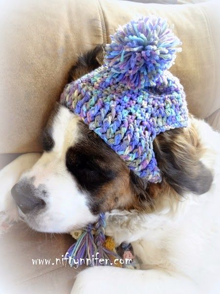 Free Crochet Pattern ~A Silly Hat For My Silly Dog www.niftynnifer.c… #Crochet…
