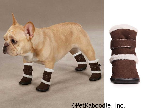 ugg like boots for dogs