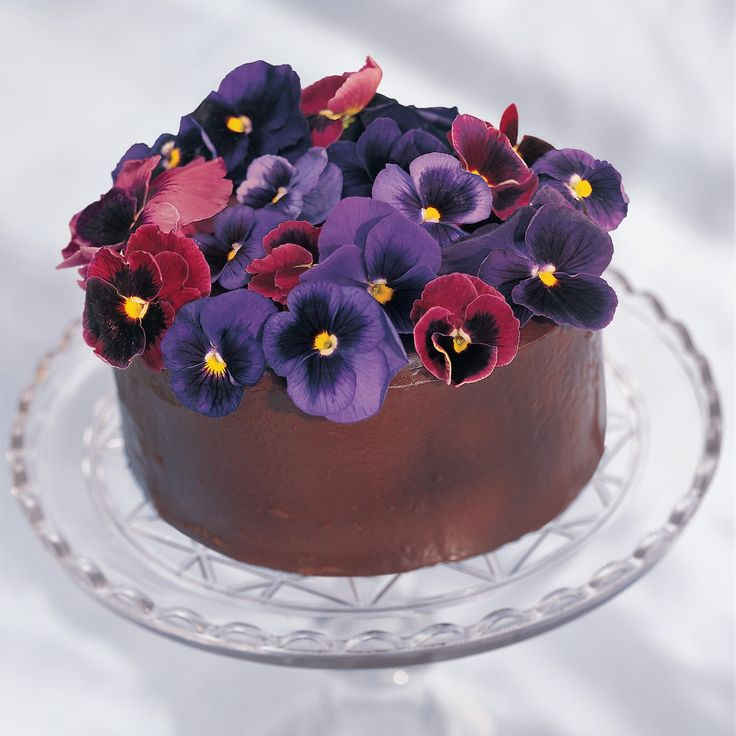 Best 25 Edible Flowers Cake Ideas On Pinterest Flower Food And Fairy
