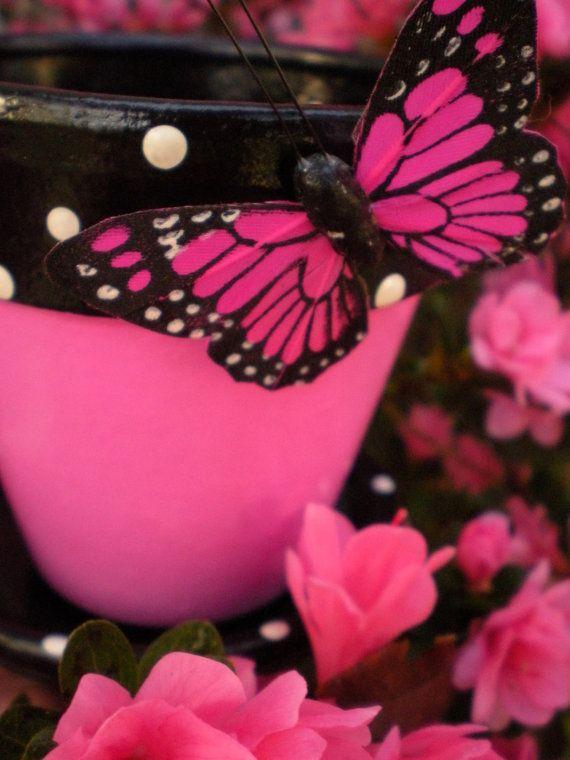 Ces pots sont belles et seront en vedette dans le Tree Hill Nature Centre papillon Festival à Jacksonville, en Floride cette année!  Il s'agit d'un pot de fleur 3 1/2 pouce avec soucoupe assortie et si vous souhaitez une juste dites moi et je vais créer un juste pour vous! Nous pouvons travailler sur les couleurs... Le pot de fleur est scellé et prêt à la plantation, donc vous aurez juste besoin d'être prudent avec le papillon! Il est fait de papier, mais est collé sur et solide: o) ...