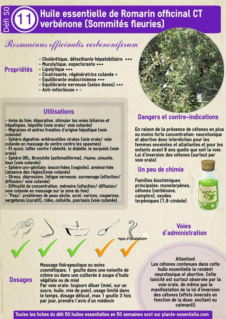 L'huile essentielle de romarin à verbénone : propriétés et utilisation sans…