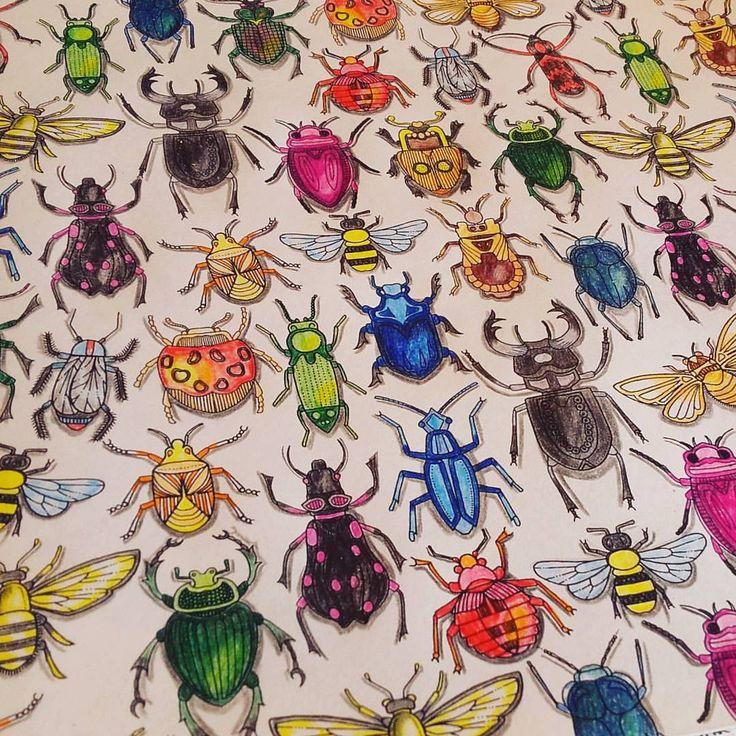 Bugs Coloring Colors Coloringbook Johannabasford Secretgarden Jardimsecreto Adultcoloringbook
