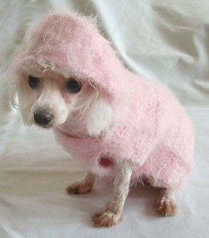 Dog Crochet Pattern  HushAByBaby Hoodie for Dog by OnceUponAPoodle, $4.95
