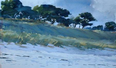 Setting Sun on Pentle Pines